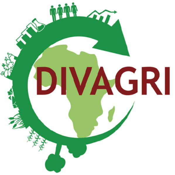 DIVAGRI (Revenue DIVersification pathways in Africa through bio-based and circular AGRIcultural innovations)
